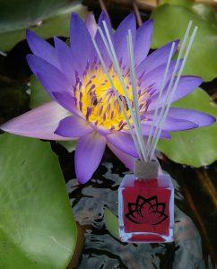 mikado-flor-de-loto