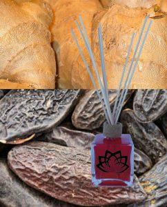 mikado-tonka-y-jenjibre
